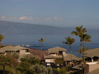 Kapalua Bay Villas  B14G2 - Kapalua vacation rentals