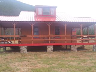 The  Red Cabin - Hot Springs vacation rentals