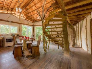 SUMMER SPECIAL! Peter Pan's Dreamtreehouse - Atenas vacation rentals