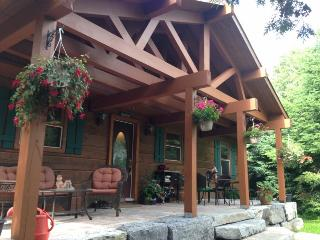 LAKE FRONT CHALET LOG & STONE- BREATHTAKING VIEWS - Buckhorn vacation rentals