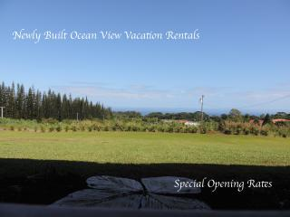 Mahana House country Inn Suite 3 - Hilo District vacation rentals
