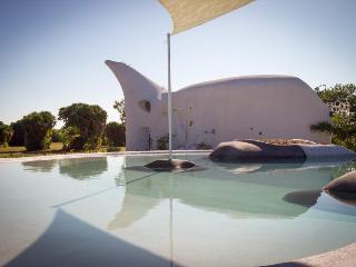 Shark & Turtle Studio Retreats @ Swan Villas - Placencia vacation rentals