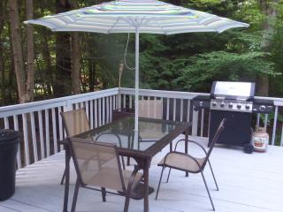 Beautiful vacation rental home (Poconos) - Tobyhanna vacation rentals