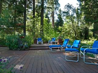 Lake View Home on the West Shore with Awesome Outdoor Space and Buoy!!! - Homewood vacation rentals