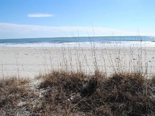Nice, Peaceful, Convenient 2Bed/2Bath@Shore Drive, Myrtle Beach #205 - Myrtle Beach vacation rentals