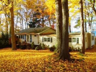 Arcturus Cottage - Olcott vacation rentals