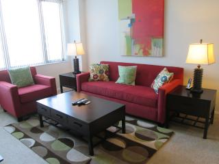 Luxury 2 BR Apartments at Third Square - Boston vacation rentals