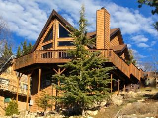 Arctic Lodge - passes to private beach clubs - Lake Arrowhead vacation rentals