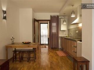 Céntrico apartamento en Barcelona - Barcelona vacation rentals