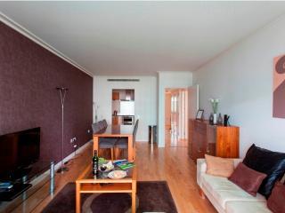 Classy Dockland 1 Bed Apartments - Paris vacation rentals