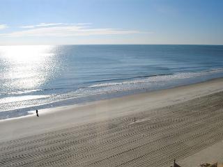 Sunny Cheerful Oceanfront Property@Brigadune-Shore Drive Myrtle Beach SC #8E - Myrtle Beach vacation rentals
