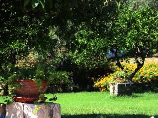 Agriturismo Borgo Levante - Verde 3 posti - Catania vacation rentals
