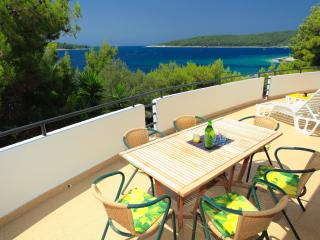 BEACHFRONT apartment on Korcula - bright, spacious - Cove Mikulina luka (Vela Luka) vacation rentals