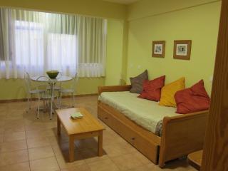 Studio in Gran Canaria 101419 - Las Palmas de Gran Canaria vacation rentals