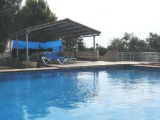 House in Ibiza 100572 - Ibiza vacation rentals