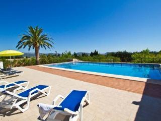 Villa in Sa Pobla, Mallorca 101585 - Sa Pobla vacation rentals