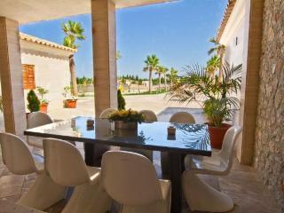 Villa in Sa Pobla, Mallorca 101615 - Sa Pobla vacation rentals