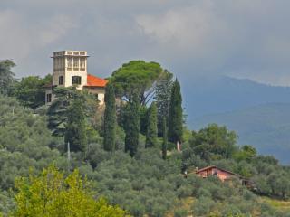 Villa La Torre Lucca  pool WiFi- TFR16 - Lucca vacation rentals