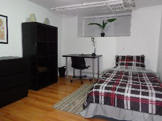 Spacious 3 BDR Downtown Apartment - Ottawa vacation rentals