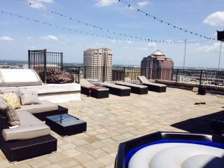 Downtown Houston Penthouse w/ Terrace - Seabrook vacation rentals