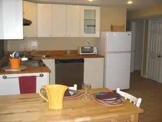 Apartment Near NIH and Bethesda Naval Hospital - Bethesda vacation rentals