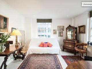 2 bed flat on Gillingham Street, Belgravia - London vacation rentals