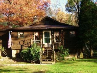 Beechwood Cottage Ligonier - Hidden Valley vacation rentals