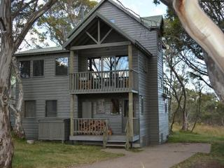 Panorama Chalet - Mount Hotham vacation rentals