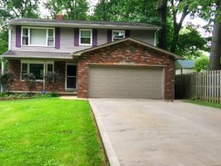 Whole House Pleasant Parma - Ohio vacation rentals