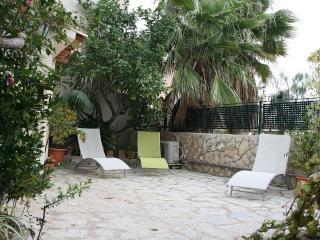 Casa Ca Ses Nines - Selva vacation rentals
