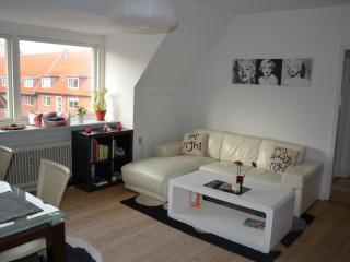 Romantic/Business in  Odense - Odense vacation rentals