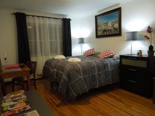 TIMES SQUARE just mins away - Astoria vacation rentals
