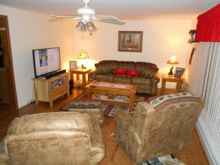 Indian River, vacation home, In-town, very clean! - Northeast Michigan vacation rentals