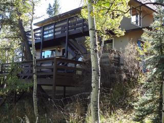 The Treehouse Mountain Home in Bailey Colorado!!!! - Bailey vacation rentals
