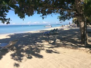 Rose's Island Paradise - Negril vacation rentals