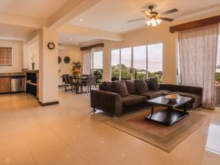 TripAdvisor Excellent Rating Ocean View Penthouse - Playa Flamingo vacation rentals