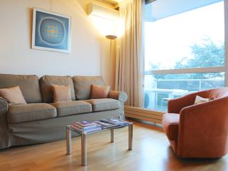Charming Apartment Near Chatelain - Brussels vacation rentals
