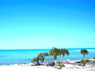Secluded Luxury Accommodation- Whitby North Caicos - Whitby vacation rentals