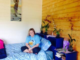 The Blue Studio - Puna District vacation rentals