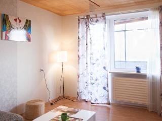 Stylish flat - Kaunas vacation rentals