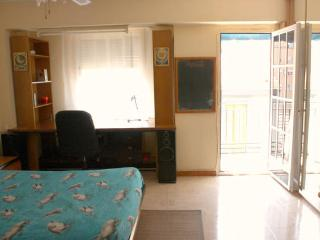2 bedrooms flat, 5m. from City of Science and Arts - Valencia vacation rentals