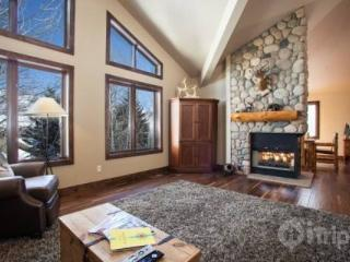 Private Hot Tub, Pet Friendly, Between Vail and Beaver Creek~ Gorgeous Remodel! - Vail vacation rentals