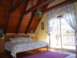 Updated Chalet in a private setting - Mount Pocono vacation rentals