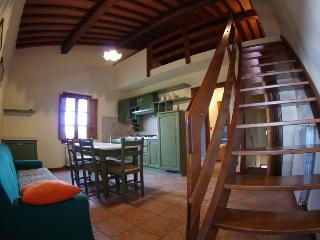 Arezzo House, Residence  In Tuscany Farm Holiday - Pergine Valdarno vacation rentals