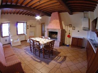 Siena House, Residence in Tuscany, Farm Holiday - Pergine Valdarno vacation rentals