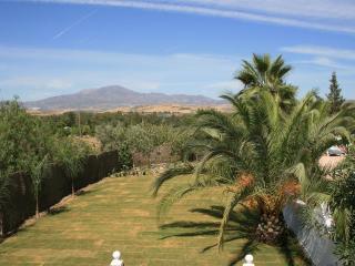 Casa Las Palmeras - Coin vacation rentals