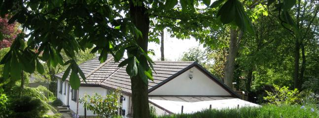 Midwood Lodge from the upper garden with Tarzan swing - Splendid Coastal Lodge Garden & Treehouse Alnmouth - Alnmouth - rentals