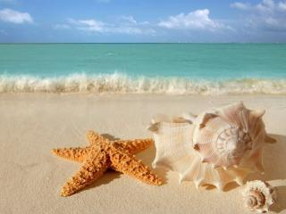 Beauty in Paradise Summer Sale - Cancun vacation rentals