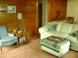 BARTON SPRINGS/ SO/CO Guest Cottage monthly - Austin vacation rentals