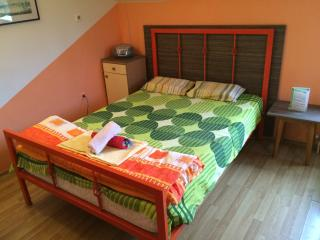 Motel style apartment with real LUX beds - Novi Sad vacation rentals